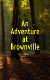 An Adventure at Brownville by Ambrose Bierce book cover