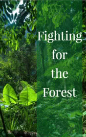 Fighting for the Forest by Clare Gray book cover