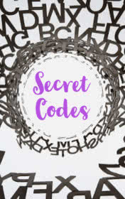 Secret Codes by Ken Beatty book cover