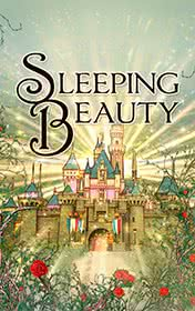 Sleeping Beauty by Charles Perrault book cover
