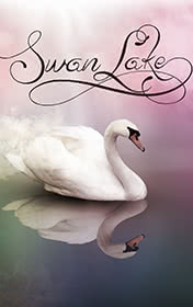 Swan Lake by Jenny Dooley book cover