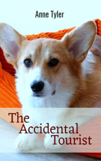 The Accidental Tourist by Anne Tyler book cover