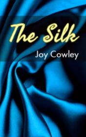 The Silk by Joy Cowley book cover