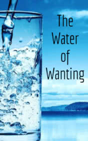 The Water of Wanting by Brennan Frank book cover